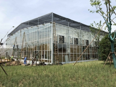 Chongming Greenhouse Project